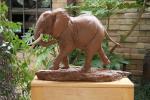 The Bull Elephant - left side